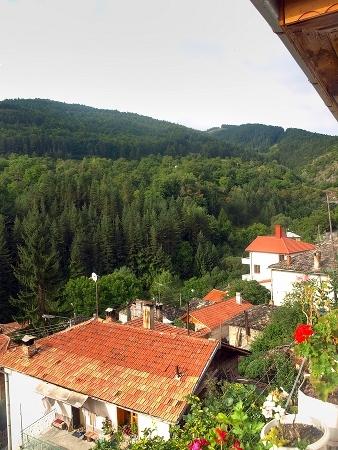 Селски тТуризъм в. с. Орехово - Родопи